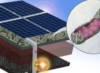 Bactéria Viva - Painéis Solares