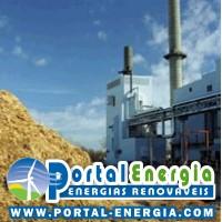biomassa-cadeia-de-valor