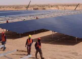 central-solar-sheikh-zayed