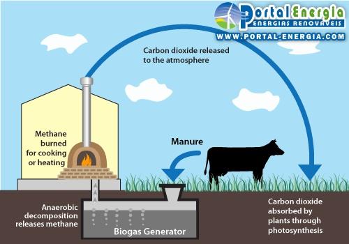 funcionamento do ciclo de producao biogas