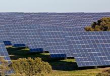 Emprego Capwatt Central Solar Ferreira Alentejo