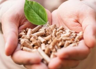 energia-biomassa-pellets