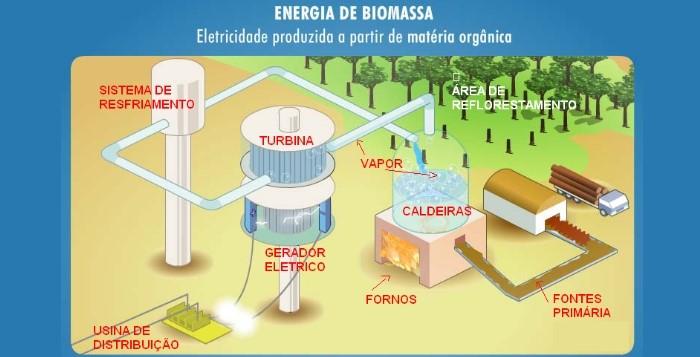 energia-da-biomassa-como-funciona