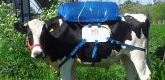 energia-solar-biogas