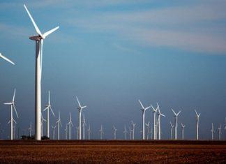 horse-hollow-wind-farm