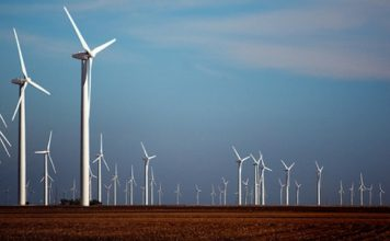 horse-hollow-wind-farm