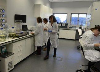 secil-unidade-producao-microalgas-laboratorio