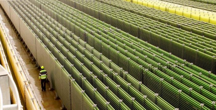 Unidade de Produção de Microalgas - Secil